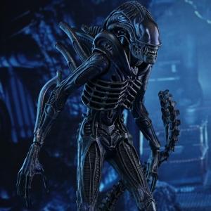 (특가판매) [HOTTOYS] 1/6 Alien Warrior 에일리언 워리어 [MMS354]